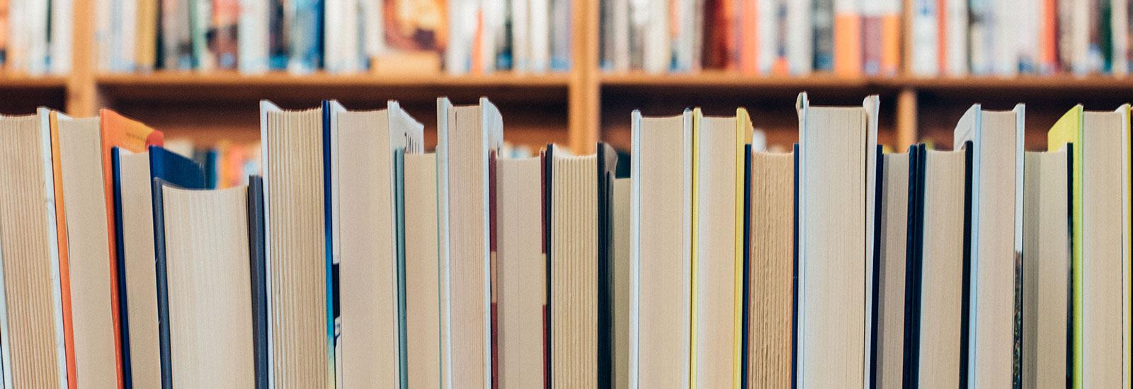 Bibliotecas do Agrupamento de Escolas nº2 de Serpa